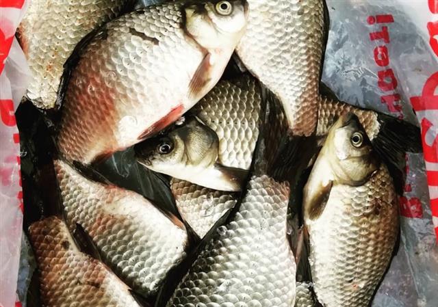 На-Ветлянском-водохранилище-поймали-подвоха-браконьера