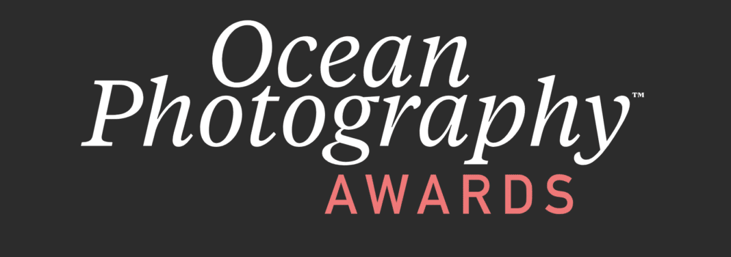 2020-ocean-photography-finalists-announced,-winner-will-be-unveiled-today