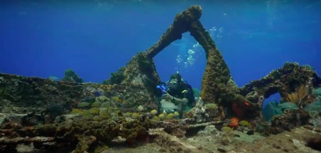 padi-offering-'book-with-confidence'-dive-travel-deals
