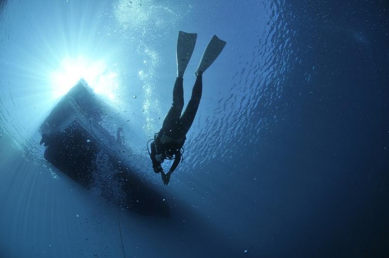 подводный-охотник-жутко-взволновал-жителей-Приморья-в-Сети-—-primamedia